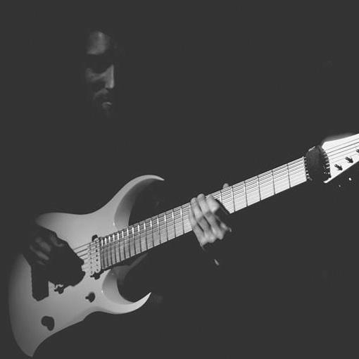 Branding & Web Prysm Guitars